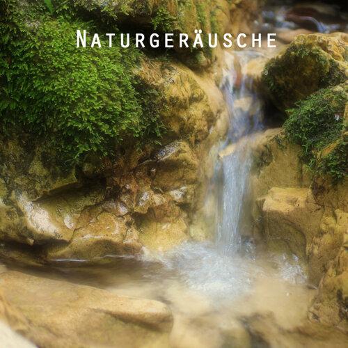 Gentle Mountain Rain Sound - Relaxing Nature Sounds Baby Music Sleep