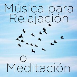Musica para Relajación o Meditación: 30 Canciones