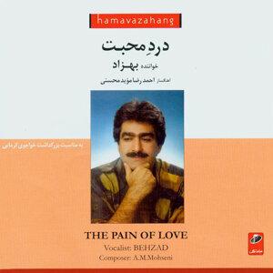 Dard-e-Mohabbat (The Pain of Love)