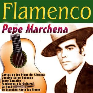 Flamenco: Pepe Marchena