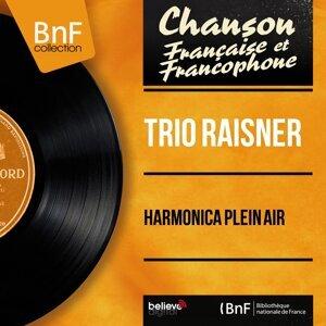 Harmonica plein air - Mono Version