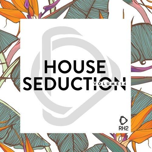 House Seduction, Vol. 14