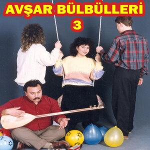 Avşar Bülbülleri, No. 3