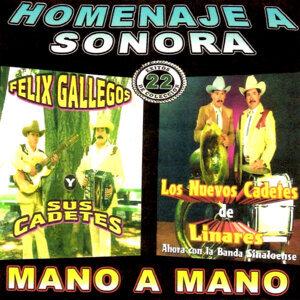 Homenaje a Sonora