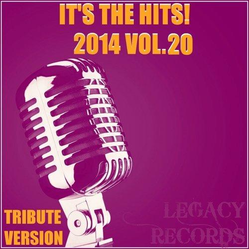It's The Hits! 2014 Vol.20