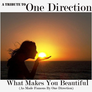 A Tribute To One Direction (What Makes You Beautiful Cover)