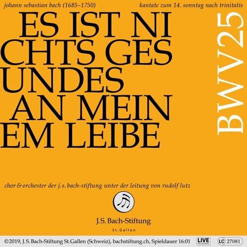 Bachkantate, BWV 25 - Es ist nichts Gesundes an meinem Leibe