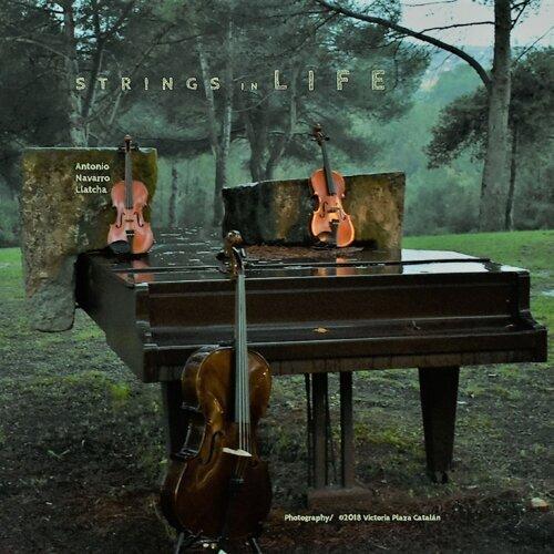 Strings in Life
