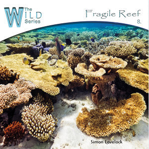 Fragile Reef
