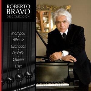 Roberto Bravo de Colección, Vol. 7