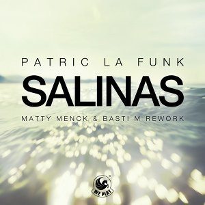 Salinas - Matty Menck & Basti M Rework