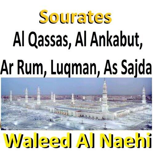 Waleed Al Naehi - Sourates Al Qassas, Al Ankabut, Ar Rum, Luqman, As