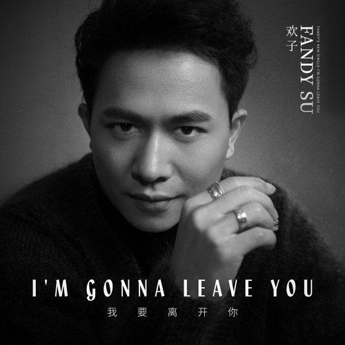 我要離開你