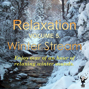 Relaxation (Vol. 5): Winter Stream