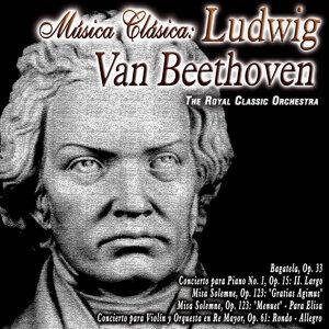 Música Clásica: Ludwig Van Beethoven