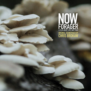 Now, Forager (Original Motion Picture Soundtrack)