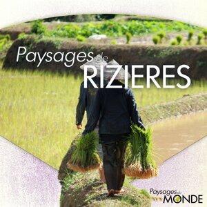 Paysages de rizières - Paysages du monde