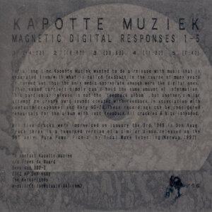 Digital Magnetic Responses
