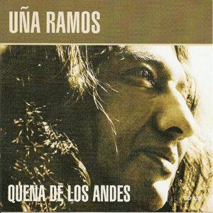 Quena de los Andes