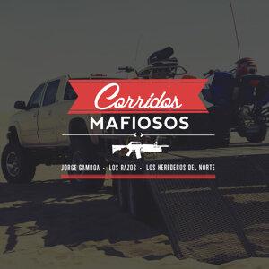 Corridos Mafiosos, Jorge Gamboa, Los Razos, Los Herederos del Norte