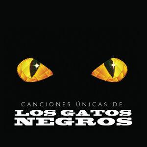 Canciones Únicas de los Gatos Negros