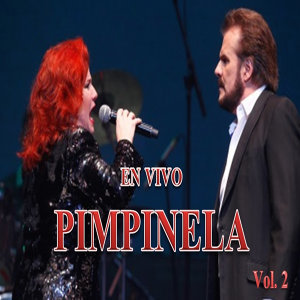 Pimpinela en Vivo, Vol. 2