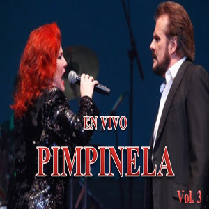 Pimpinela en Vivo, Vol. 3