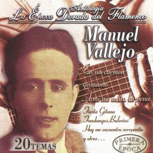 Manuel Vallejo, La Época Dorada del Flamenco