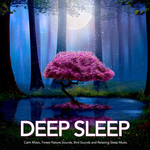 Sleeping Music, Nature Sounds, Deep Sleep Music Experience