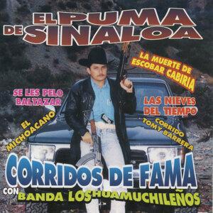 Corridos De Fama Con Banda Los Huamuchileños