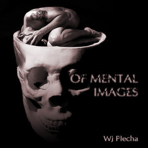 Of Mental Images