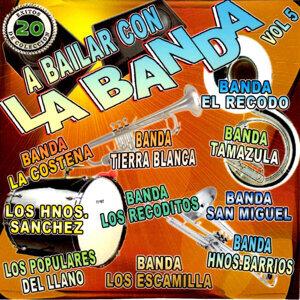 A Bailar Con la Banda, Vol. 5