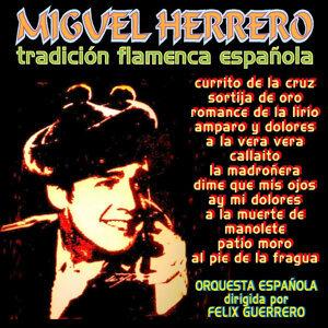 Tradición Flamenca Española