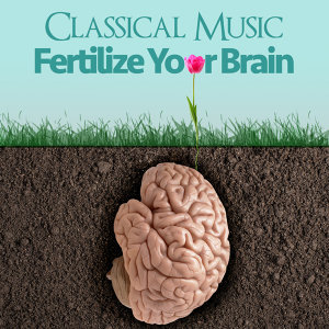 Classical Music - Fertilize for Your Brain