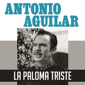 La Paloma Triste