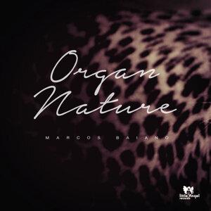 Organ Nature