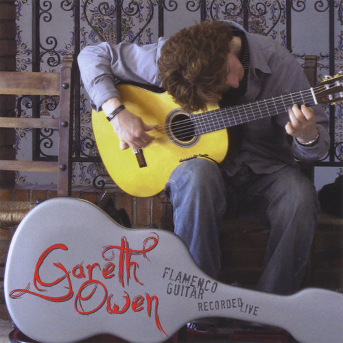 Gareth Owen Flamenco Guitar