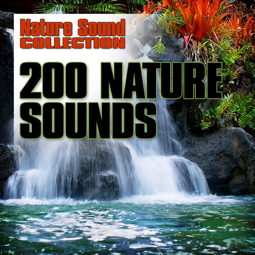 Glass Wind Chimes Ringing-Nature Sound Collection-KKBOX