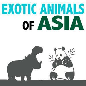 Exotic Animals of Asia