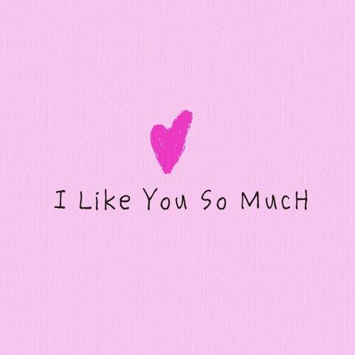 I Like You So Much