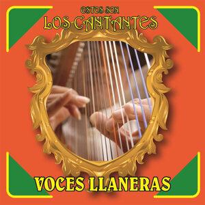 Estos Son los Cantantes: Voces Llaneras