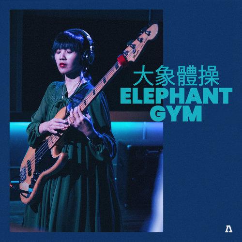 Elephant Gym on Audiotree Live