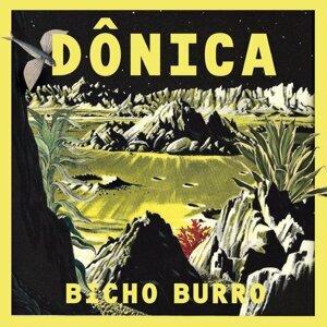 Bicho Burro