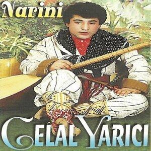Narini