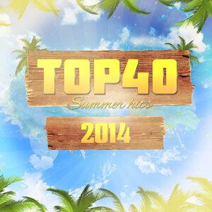 Top 40 Summer Hits 2014