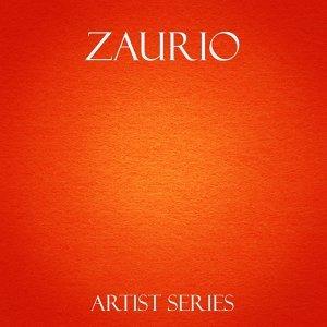 Zaurio Works