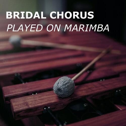 Bridal Chorus - played on Marimba