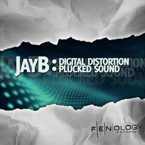 Digital Distortion / Plucked Sound