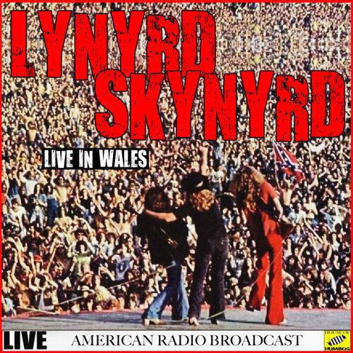 Lynyrd Skynyrd - Live in Wales - Live