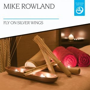 Fly on Silver Wings